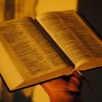 biblia 28